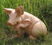 Schwein Pfote hoch
