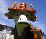 Kuh Figur als Cowboy im Western Country Style