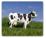 Kuh als Gartenfigur Figur Dekofigur & Werbefigur