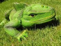 Leguan als Dekofigur Figur Reptil für Terrarium