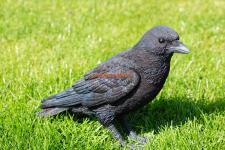 Schwarzer Rabe Krähe Vogel Figur Dekofigur