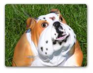 Englische Bulldogge Tierfigur Gartenfigur Figur