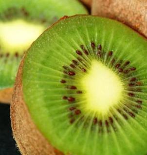 Selbstfruchtende Kiwi Solo 100-125cm - Actinidia arguta - Vorschau