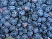 Heidelbeere Blueray 60-80cm - Vaccinium corymbosum