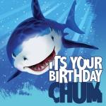 16 Haifisch Party Geburtstag Servietten