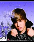 8 Justin Bieber Partytüten