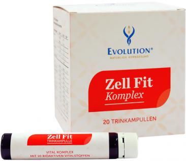 Evolution Zell Fit Komplex Trinkampullen
