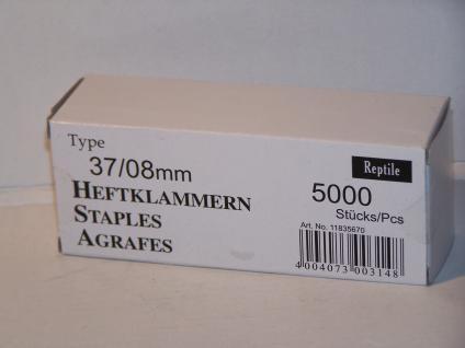 Tackerklammern Typ 37/13/H 8mm 5000 Stück von Reptile-Rapid - Vorschau