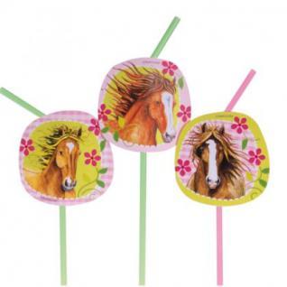 8 Trinkhalme, Pferde Party, Geburtstag, Kindergeburtstag, Deko, Charming Horses