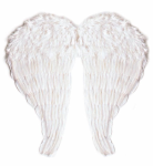 Flügel mit modellierbaren Federn 67 x 64 cm weiß Engelsflügel