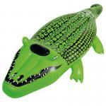 Wehncke® Wasserspielzeug Reittier Krokodil 165 x 75 cm