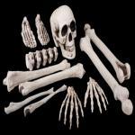 Halloween Deko Knochen Set Skelett 12 teilig Sack mit Knochen und Totenkopf