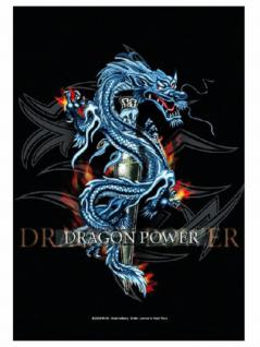 Dragon Power Merchandise Schlüsselanhänger