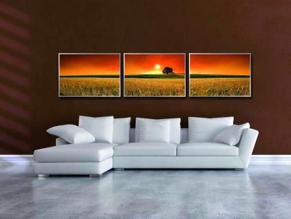 infrarotheizung nomix dekor 700 watt bildheizung mit. Black Bedroom Furniture Sets. Home Design Ideas