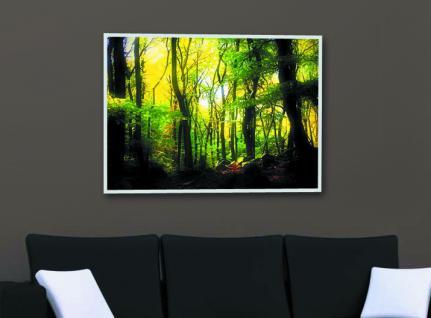infrarotheizung nomix dekor 500 watt bildheizung mit. Black Bedroom Furniture Sets. Home Design Ideas