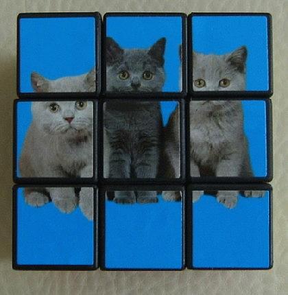 Katzen - Würfel zum Knobeln - Vorschau 2