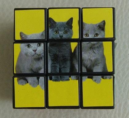Katzen - Würfel zum Knobeln - Vorschau 3