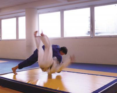 Turnen Wurfmatte Standard 3 x 2 m Budo Judo Kampfsport Matte Schulsport Bänfer Trainingsmatte
