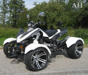 Allstars Quad 300cc Speedstar weiss-schwarz Straßenzulassung Zweisitzer