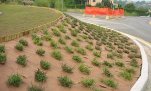Plantex® Premium plus 1, 15 x 10 m Unkrautvlies Gartenvlies von DuPont™