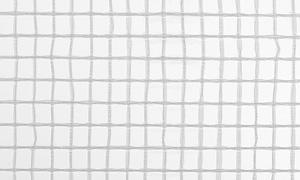 Gitterfolie weiß 2,0 x 50 m Rolle mit Armierungsgewebe, leichte Ausführung, Abdeckfolie, Gitterplane 0,90 EUR/qm