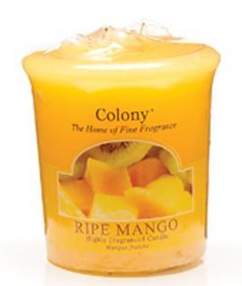 Ripe Mango Duft Votivkerze Colony