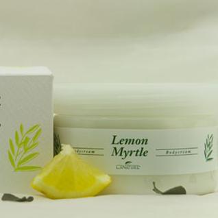 Lemon Myrtle Körpercreme 250 ml von LaNature