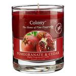 Pomegranate & Cedar Colony Duftkerze im Glas 35h