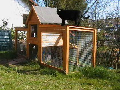 hasenstall kaninchenstall fiver maxi kaufen bei ronalds holzladen. Black Bedroom Furniture Sets. Home Design Ideas