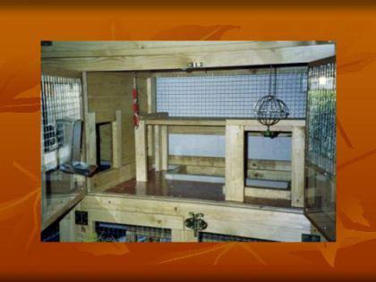 hasenstall kaninchenstall spielbergalm kaufen bei ronalds holzladen. Black Bedroom Furniture Sets. Home Design Ideas
