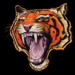 Tiger 6 Shirt