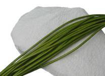 10 Stück Rindleder Rundriemen hellgrün, geschnitten, für Lederschmuck, Lederketten, Länge 100 cm, Ø 2 mm