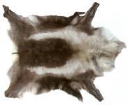 großes Wildfell, Nordisches Rentierfell beige-grau-braun, super Dekorationsfell, ca. 135-145 cm, Sortierung I