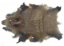exklusives deutsches Wildfell, Wildschweinfell, super Dekorationsfell, ca. 90x65 cm