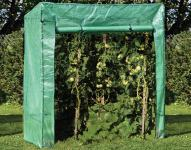 BREMA Tomatengewächshaus 170 x 80 x 190 / 170 cm
