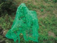 Vogelschutznetz, Schutznetz, Netz, Vogelnetz 5 x 4 m, grün