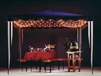 LED-Pavillon-Netz 200 BS warmweiss weiss aussen