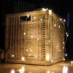 LED-Drahtbüschel, 40 warmweiße LEDs, batteriebetrieben