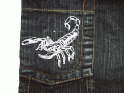 Kinder Jungen Jeans Hose Skorpion - Vorschau 2