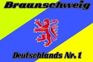Flagge Fahne Braunschweig Nr. 1 90 x 150 cm