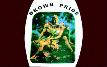 Flagge Fahne Brown Pride 90 x 150 cm - Vorschau