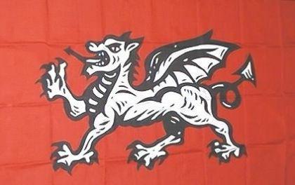 Flagge Fahne Drache 90 x 150 cm - Vorschau