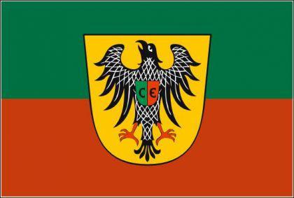 Flagge Fahne Esslingen 90 x 150 cm - Vorschau