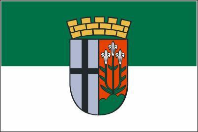 Flagge Fahne Fulda 90 x 150 cm - Vorschau