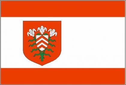 Flagge Fahne Halle Westfalen 90 x 150 cm - Vorschau