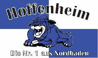 Flagge Fahne Hoffenheim Nr. 1 90 x 150 cm - Vorschau