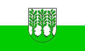 Flagge Fahne Hoyerswerda 90 x 150 cm - Vorschau