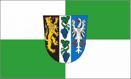 Flagge Fahne Landkreis Bad Dürkheim 90 x 150 cm