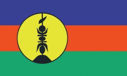 Flagge Fahne Neukaledonien 90 x 150 cm - Vorschau