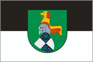 Flagge Fahne Neustadt an der Aich 90 x 150 cm